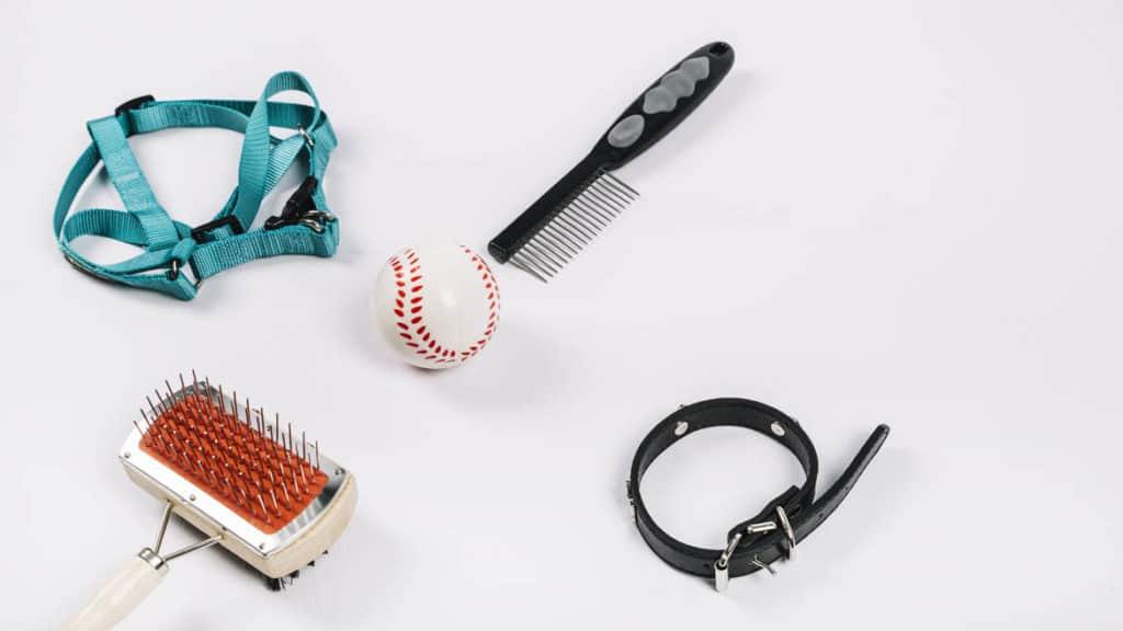 Basic Dog Grooming Supplies